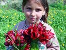 Cypriot Child Holding Tulips